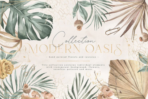 Modern-Oasis-1.jpg