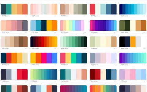 Trending_color_palettes_-_Coolors-2.jpg