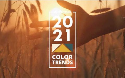 color-trend-2021-from-shutterstock.jpg