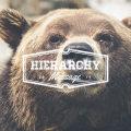 hierarchy2014-top.jpg