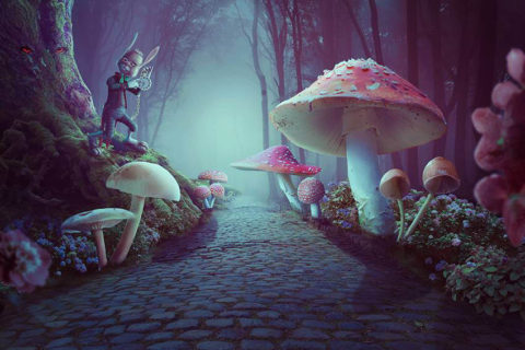 wonderland-photo-manipulation.jpg