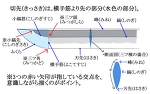 【講座】日本刀の切先(きっさき)サムネイル