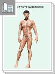 覚えておきたい骨格と筋肉の名前サムネイル
