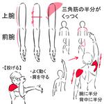 お絵描きサプリJ(肩甲上腕リズム)サムネイル