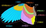 基本の翼サムネイル