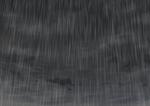 雨のブラシサムネイル