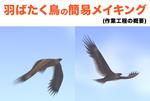 羽ばたく鳥のメイキング【3D・Blender】サムネイル