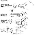 鳥の描き方講座サムネイル