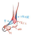 足の自分的解釈サムネイル