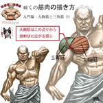 筋肉の描き方 入門編:大胸筋と三角筋サムネイル