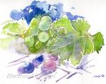「葉付き葡萄」サムネイル