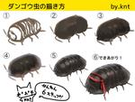 ダンゴウ虫の描き方サムネイル